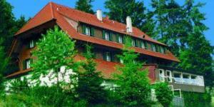 Berggasthof Haldenhof - Hof