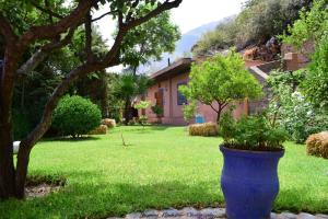 Auberge le Maquis - Accommodation - Aghbalou