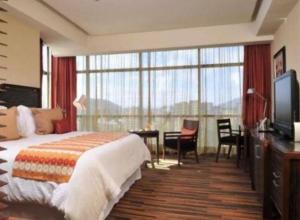 Hotel Dreams Araucania