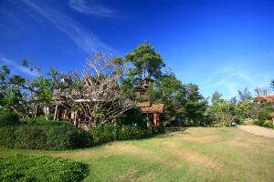 Pai Treehouse - Ban Mae Phaem Bok