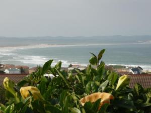 A1 Kynaston Accommodation, Bed and Breakfasts  Jeffreys Bay - big - 280