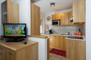 Majon Vajolet - Apartments Luisa, Apartmanok  Vigo di Fassa - big - 22