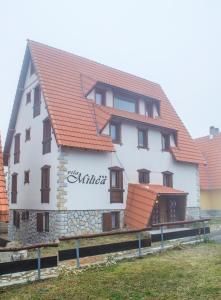 Vila Milica, Appartamenti  Kopaonik - big - 1