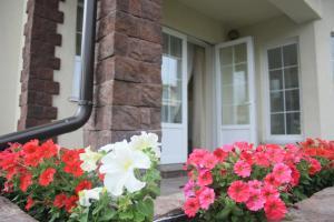 Guest House Sunny - Vilga