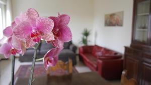 Casa Farinati - AbcAlberghi.com