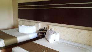 Hotel Dubrovnik, Hotely  Mérida - big - 26