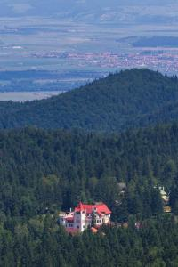 House of Dracula Hotel, Hotely  Poiana Brasov - big - 34