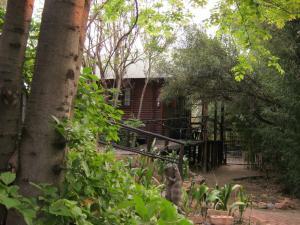 Elands River Lodge, Chaty  Machadodorp - big - 2