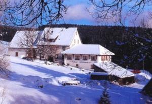 Gasthaus und Pension Löffelschmiede - Holzschlag
