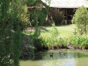 Elands River Lodge, Chaty  Machadodorp - big - 9