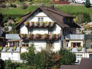 Gästehaus Bächle - Bad Peterstal