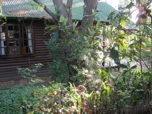 Elands River Lodge, Chaty  Machadodorp - big - 3