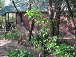 Elands River Lodge, Chaty  Machadodorp - big - 43