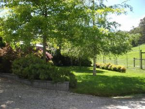 Gracefield Cottage, Farmy  Neerim South - big - 4