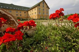 Vis Vitalis Hotel, Hotels - Kerepes