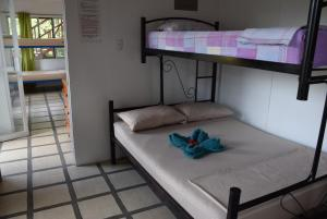 Double Room with Private Bathroom Pura Vida Hostel - Manuel Antonio
