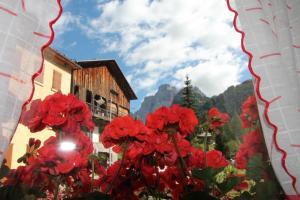 Dolomites Holidays - Apartment - Selva di Cadore