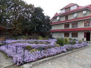 Гостевой дом Зори Карпат, Микуличин