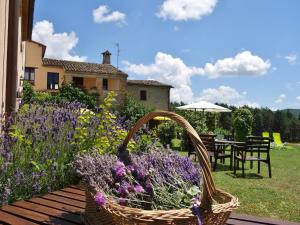 Auberges de jeunesse - Agriturismo Monterosello