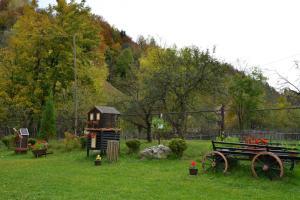 Bucuria Muntelui, Vendégházak  Törcsvár - big - 17