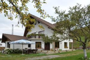 Bucuria Muntelui, Vendégházak  Törcsvár - big - 18