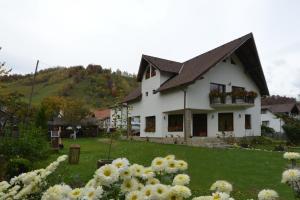 Bucuria Muntelui, Vendégházak - Törcsvár