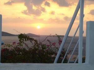 Elpida Andros Greece