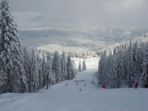 Ski&Holiday Apartments in Pamporovo