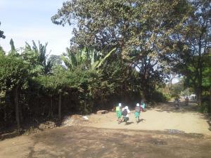 Gateway Pension Inn, Fogadók  Arusha - big - 10