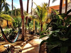 One Love Hostal Puerto Escondido, Ostelli  Puerto Escondido - big - 47