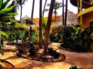 One Love Hostal Puerto Escondido, Hostelek  Puerto Escondido - big - 48