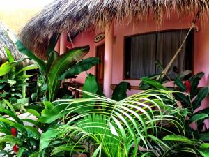 One Love Hostal Puerto Escondido, Hostels  Puerto Escondido - big - 22