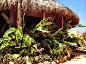 One Love Hostal Puerto Escondido, Hostely  Puerto Escondido - big - 2