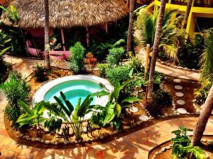 One Love Hostal Puerto Escondido, Hostelek  Puerto Escondido - big - 46