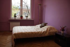 Rokosowska ParaMi, Апартаменты  Варшава - big - 4