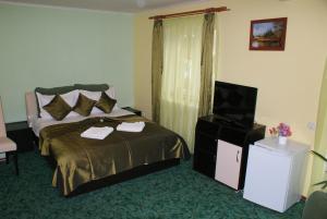 Casa Andutu - Hotel - Busteni