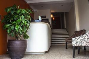 Hotel Mayis, Szállodák  Oaxaca de Juárez - big - 1