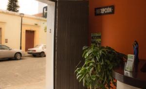 Hotel Mayis, Szállodák  Oaxaca de Juárez - big - 24