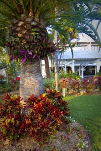 Hawks Cay Resort (7 of 57)