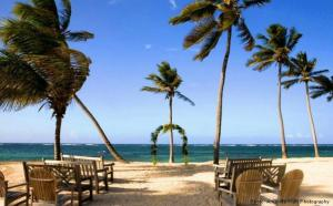 Nisbet Plantation Beach Club (9 of 29)