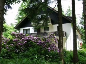 Haus Hirschmann - Hahnenklee-Bockswiese