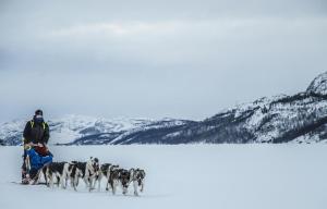 Kirkenes Snowhotel (28 of 47)