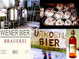 Wiener Gäste Zimmer, Bed and breakfasts  Vienna - big - 28