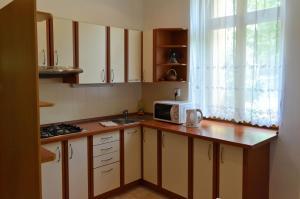 Residence Salvia, Apartmanok  Liberec - big - 35