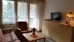 Appartements Monte Rosa, Apartmány  Täsch - big - 13