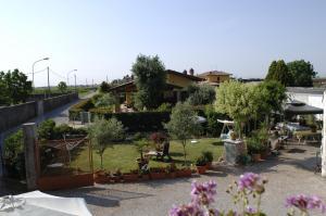 Girasole - Villafranca di Verona