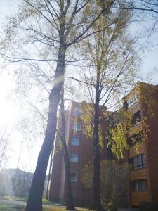 Šaulys1, Ferienwohnungen  Druskininkai - big - 36