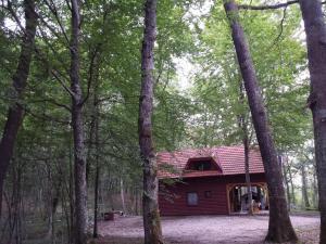 Holiday Home Ana - Ogulin