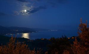 Hotel Villa Mare Luna - AbcAlberghi.com