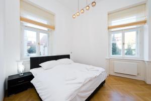 Modern Apartment Všehrdova